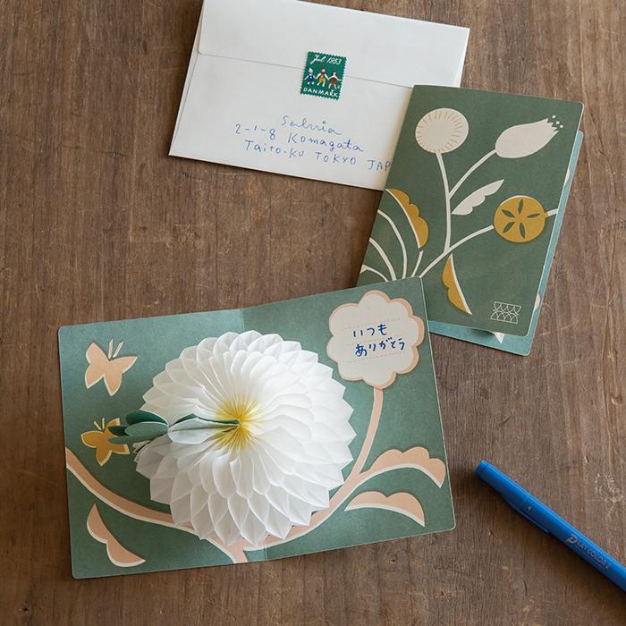 花さくメッセージカード & POP UP グリーティングカード